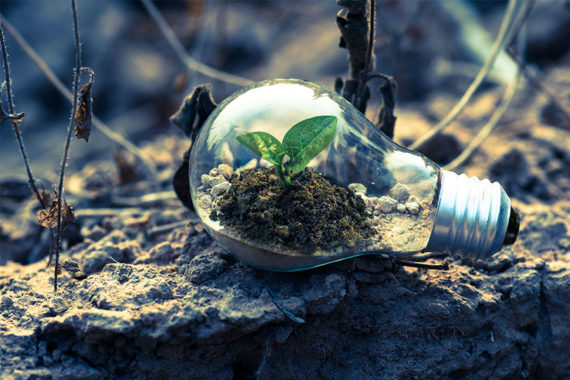 Importance of promoting sustainability from the DIY sector
