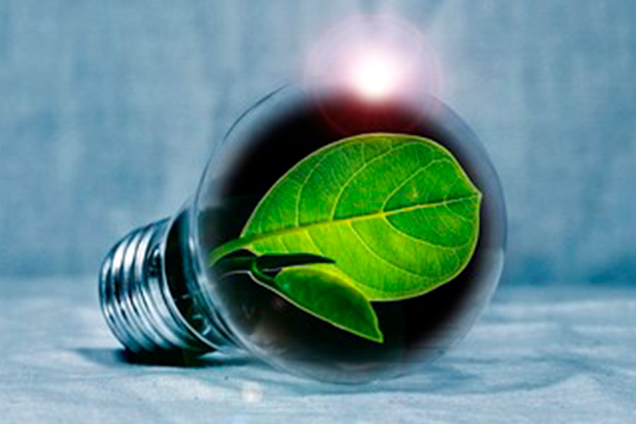 New energy label for lamps from September